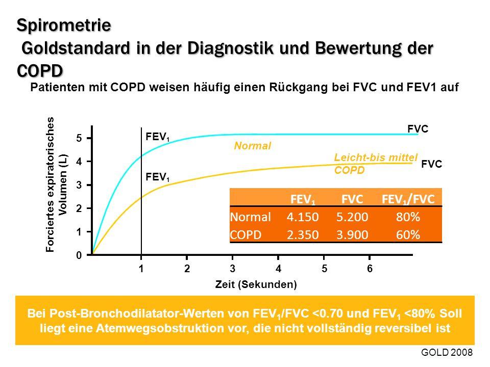 Spirometrie Goldstandard in der Diagnostik und Bewertung der COPD