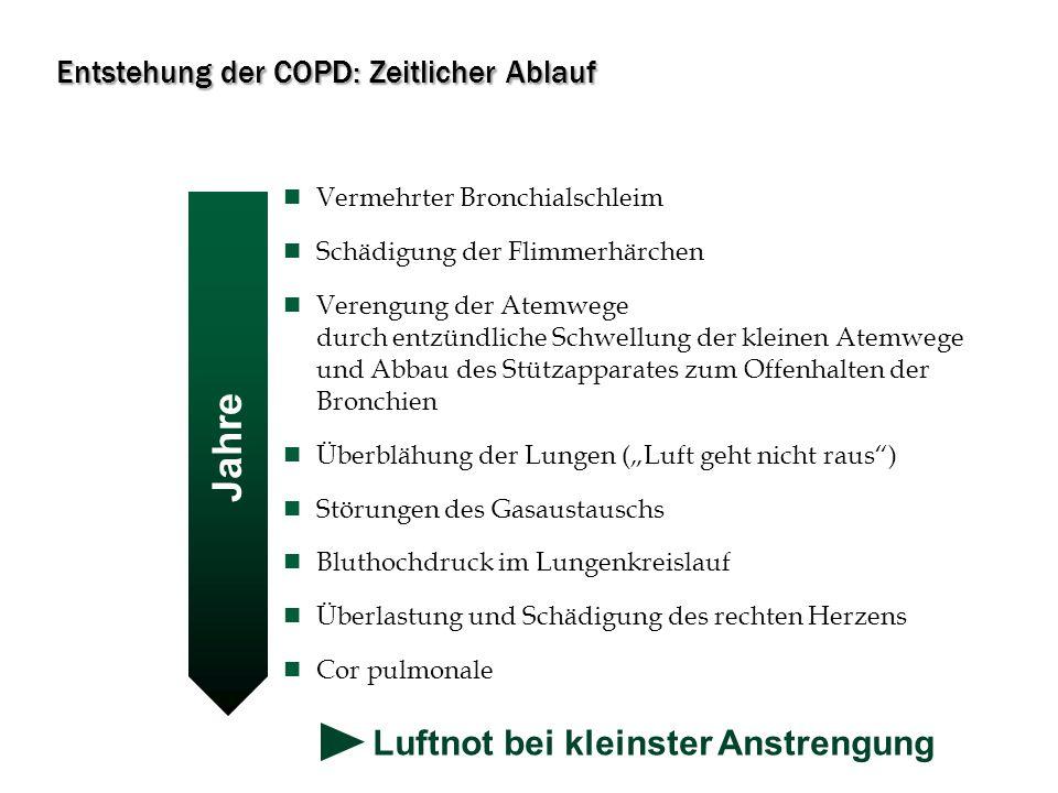 Entstehung der COPD: Zeitlicher Ablauf
