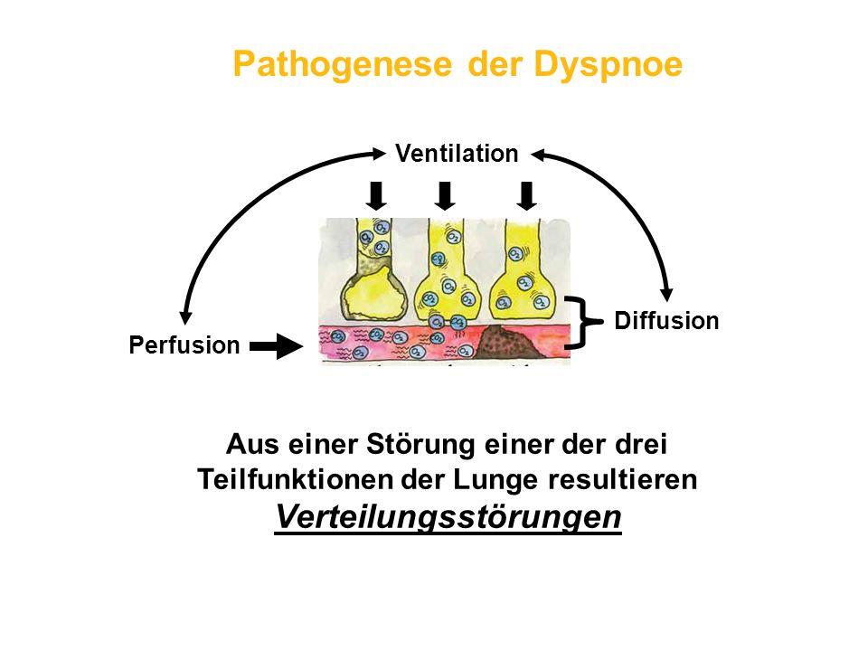 Pathogenese der Dyspnoe