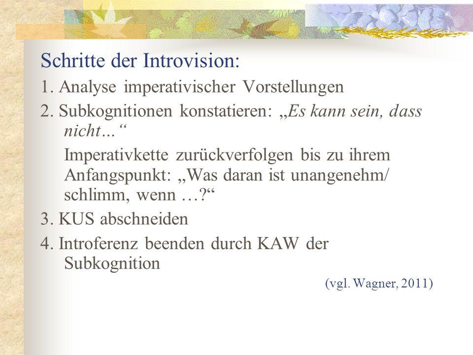 Schritte der Introvision: