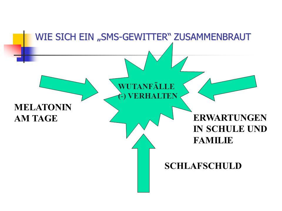 """WIE SICH EIN """"SMS-GEWITTER ZUSAMMENBRAUT"""