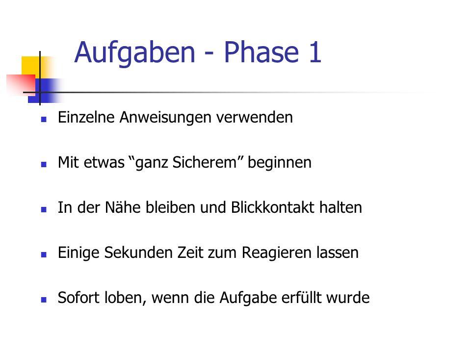 Aufgaben - Phase 1 Einzelne Anweisungen verwenden