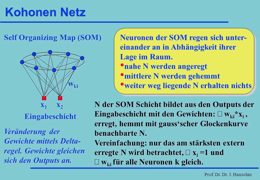 Kohonen Netz Neuronen der SOM regen sich unter-