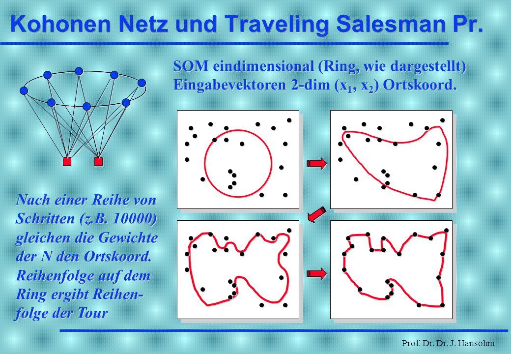 Kohonen Netz und Traveling Salesman Pr.
