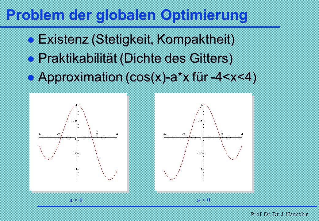 Problem der globalen Optimierung