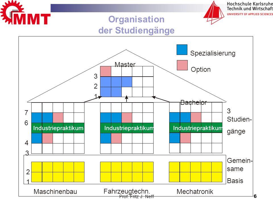 Organisation der Studiengänge