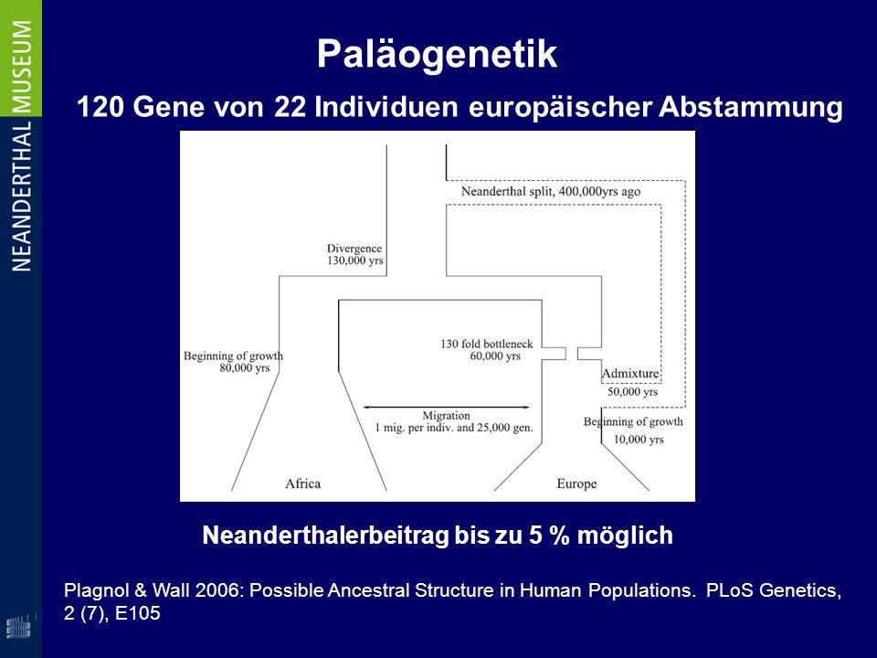 Paläogenetik 120 Gene von 22 Individuen europäischer Abstammung