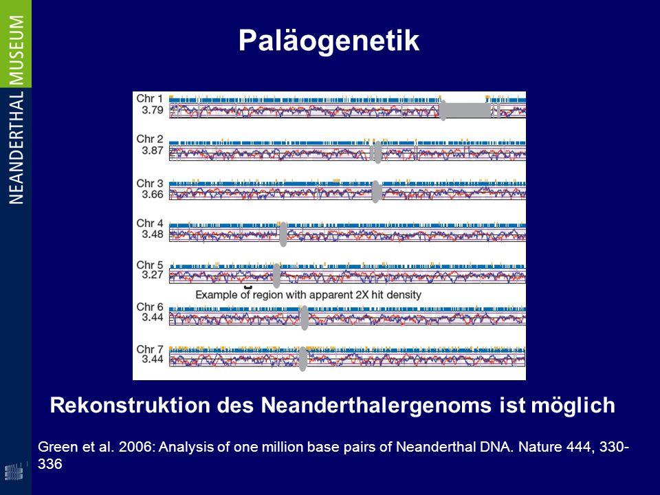 Rekonstruktion des Neanderthalergenoms ist möglich