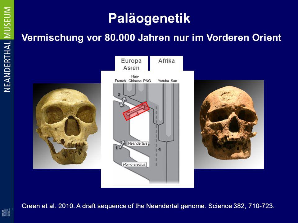 Vermischung vor 80.000 Jahren nur im Vorderen Orient