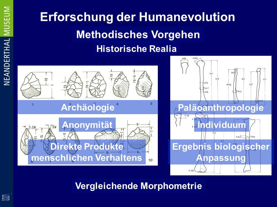 Erforschung der Humanevolution