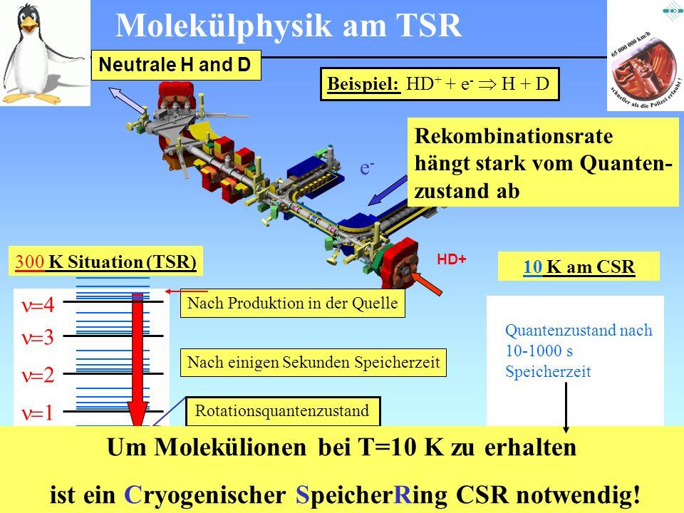 Um Molekülionen bei T=10 K zu erhalten