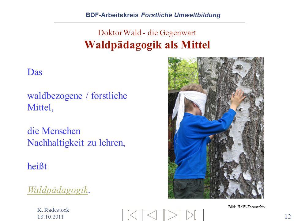 Doktor Wald - die Gegenwart Waldpädagogik als Mittel