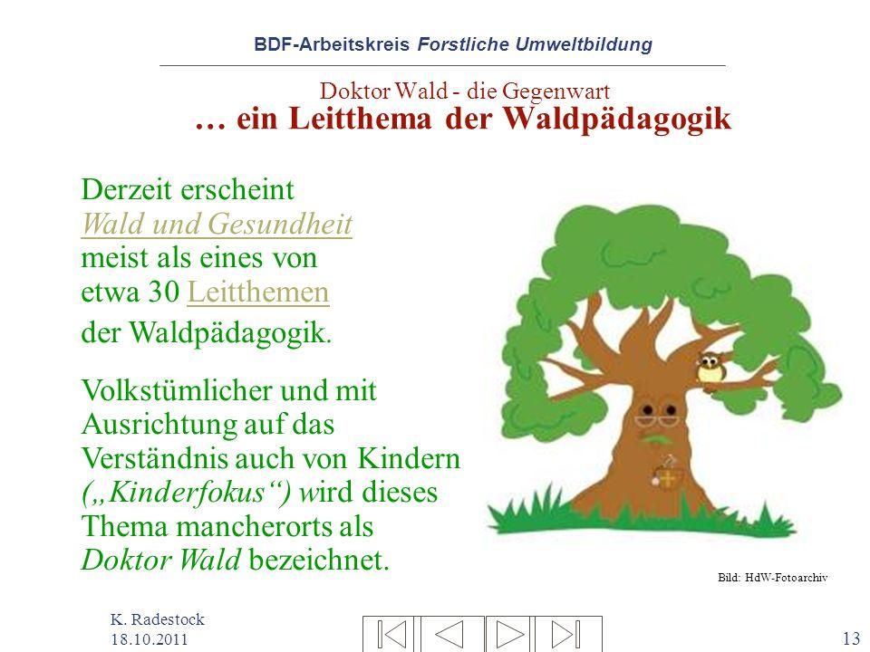 Doktor Wald - die Gegenwart … ein Leitthema der Waldpädagogik