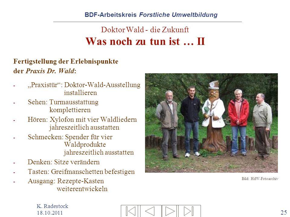 Doktor Wald - die Zukunft Was noch zu tun ist … II