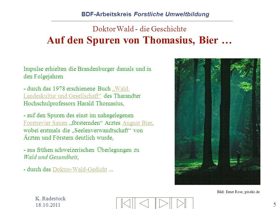 Doktor Wald - die Geschichte Auf den Spuren von Thomasius, Bier …