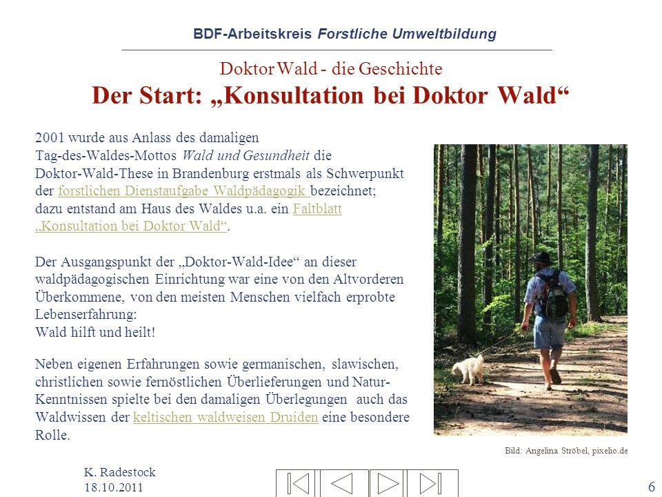 """Doktor Wald - die Geschichte Der Start: """"Konsultation bei Doktor Wald"""