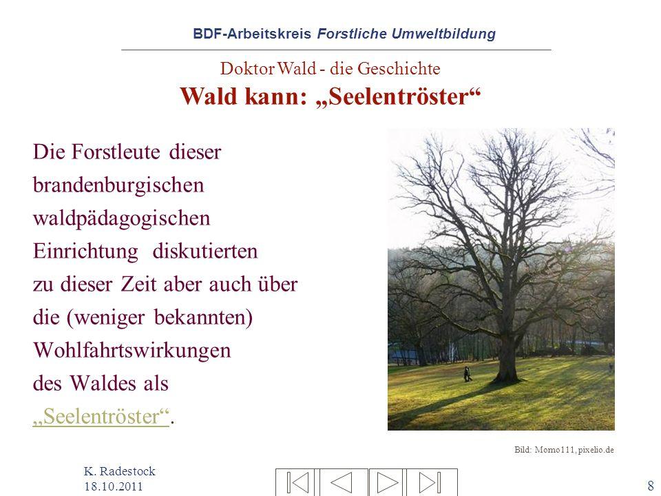 """Doktor Wald - die Geschichte Wald kann: """"Seelentröster"""