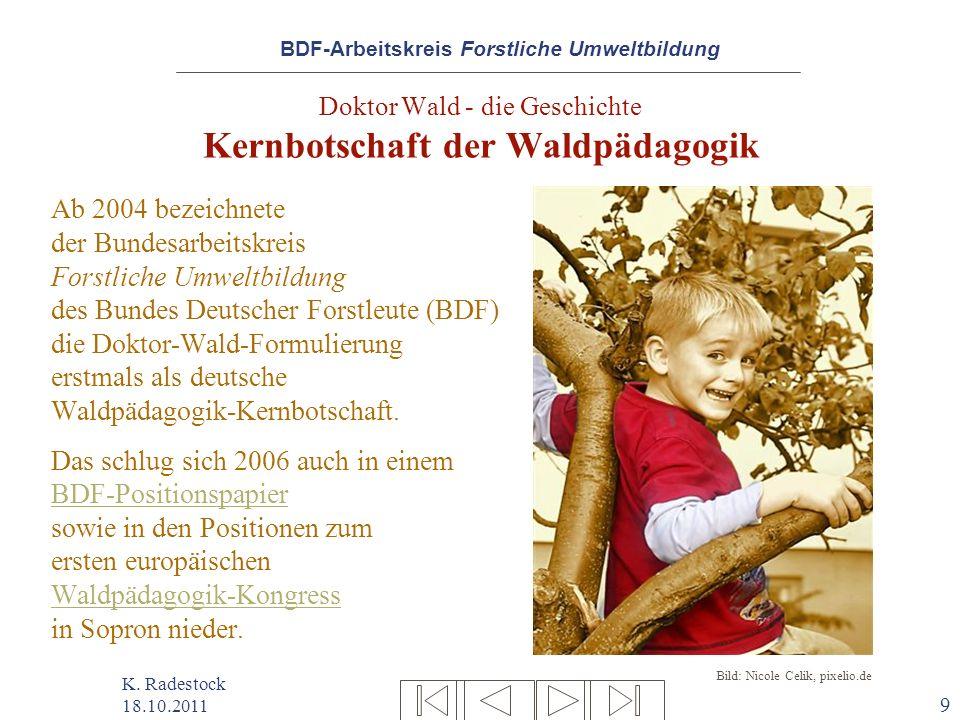 Doktor Wald - die Geschichte Kernbotschaft der Waldpädagogik