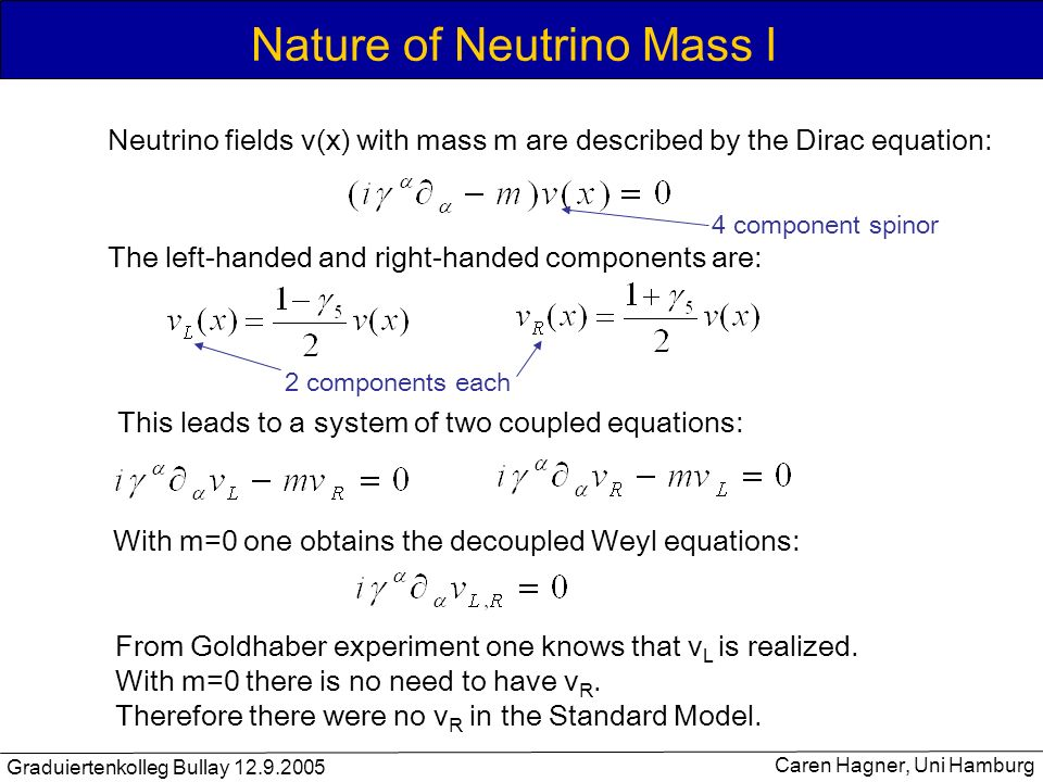 Nature of Neutrino Mass I