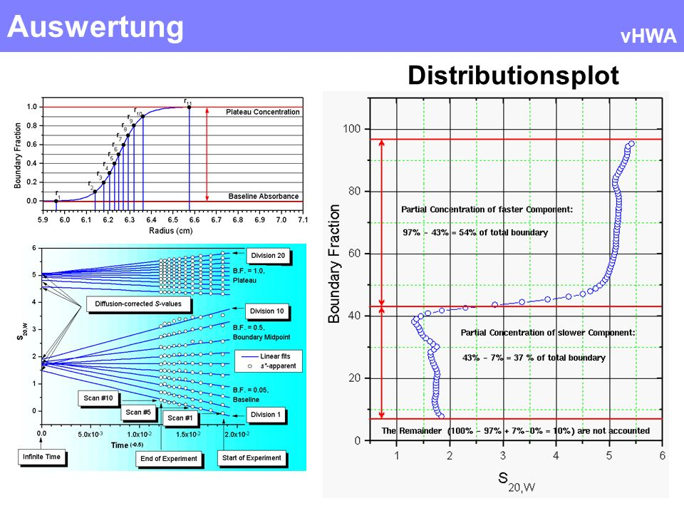 Auswertung vHWA Distributionsplot
