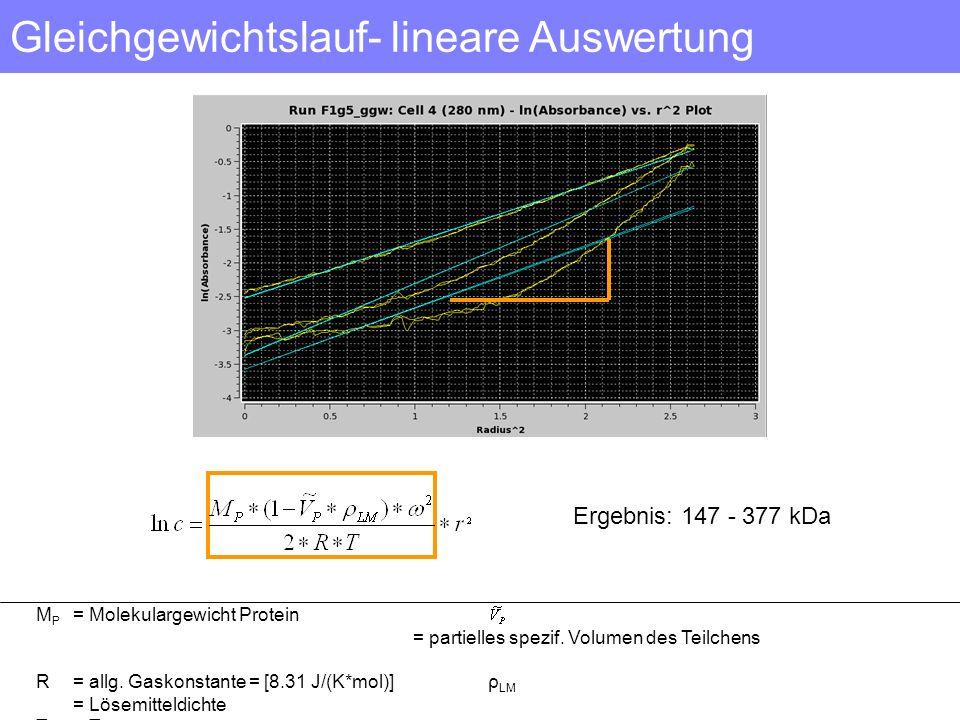 Gleichgewichtslauf- lineare Auswertung
