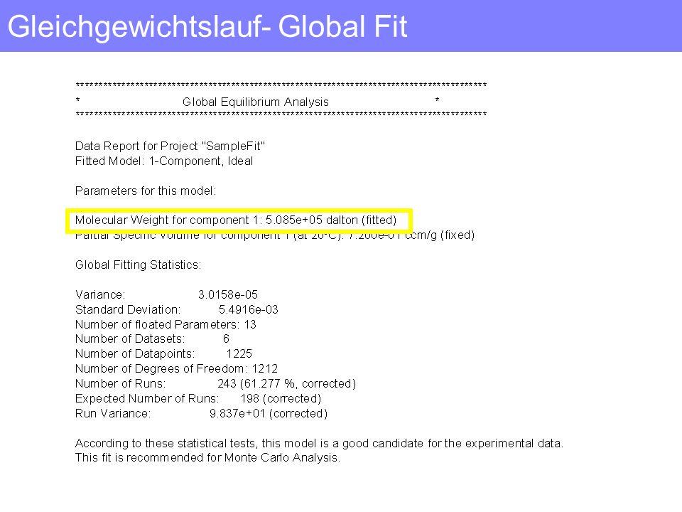 Gleichgewichtslauf- Global Fit