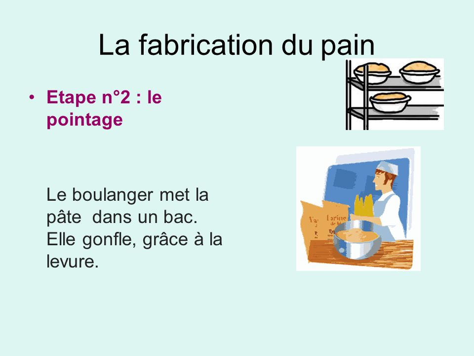 La fabrication du pain Etape n°2 : le pointage