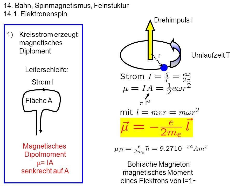 eines Elektrons von l=1~