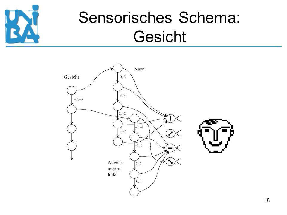 Sensorisches Schema: Gesicht