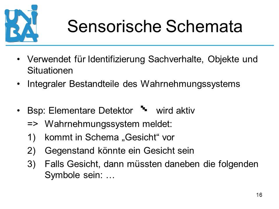 Sensorische Schemata Verwendet für Identifizierung Sachverhalte, Objekte und Situationen. Integraler Bestandteile des Wahrnehmungssystems.