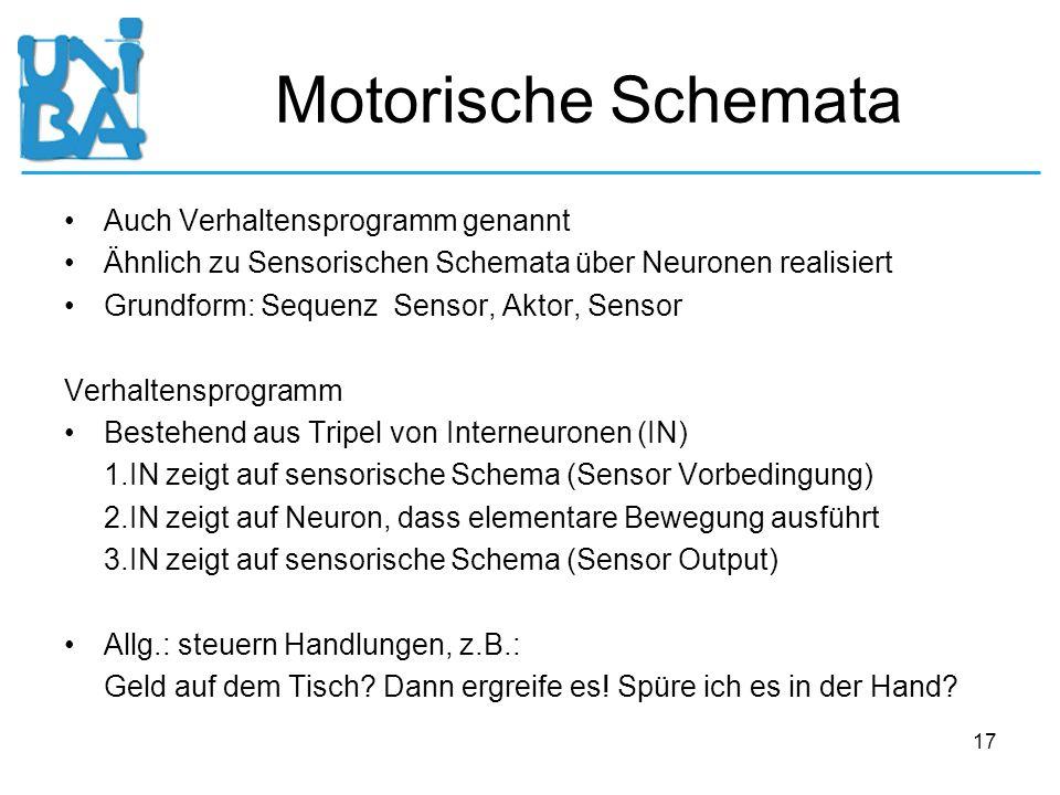 Motorische Schemata Auch Verhaltensprogramm genannt