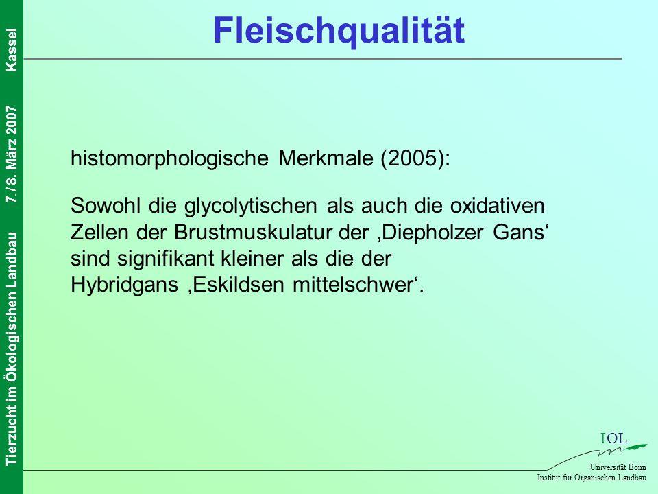 Fleischqualität histomorphologische Merkmale (2005):
