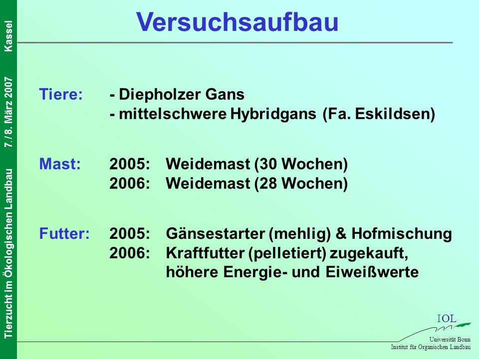 Versuchsaufbau Tiere: - Diepholzer Gans - mittelschwere Hybridgans (Fa. Eskildsen) Mast: 2005: Weidemast (30 Wochen) 2006: Weidemast (28 Wochen)