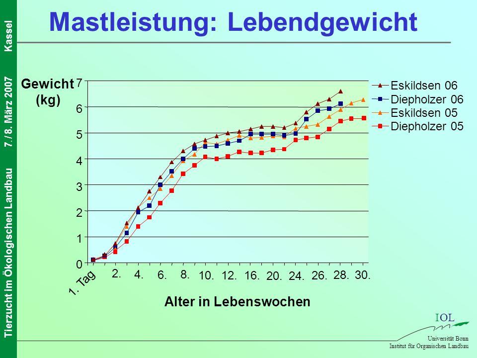 Mastleistung: Lebendgewicht