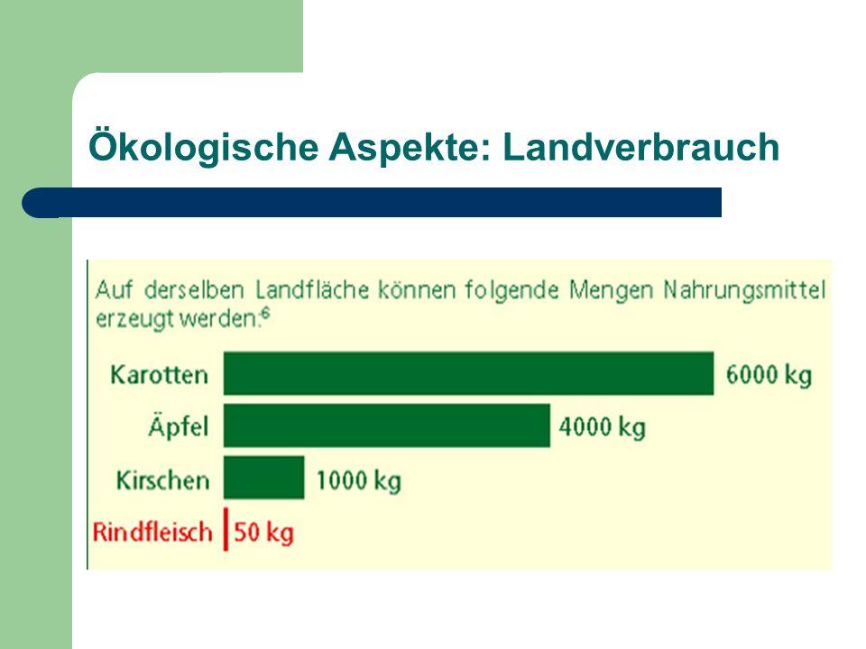 Ökologische Aspekte: Landverbrauch