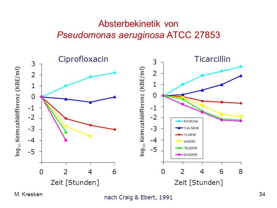 Absterbekinetik von Pseudomonas aeruginosa ATCC 27853