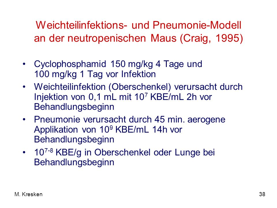 Weichteilinfektions- und Pneumonie-Modell an der neutropenischen Maus (Craig, 1995)