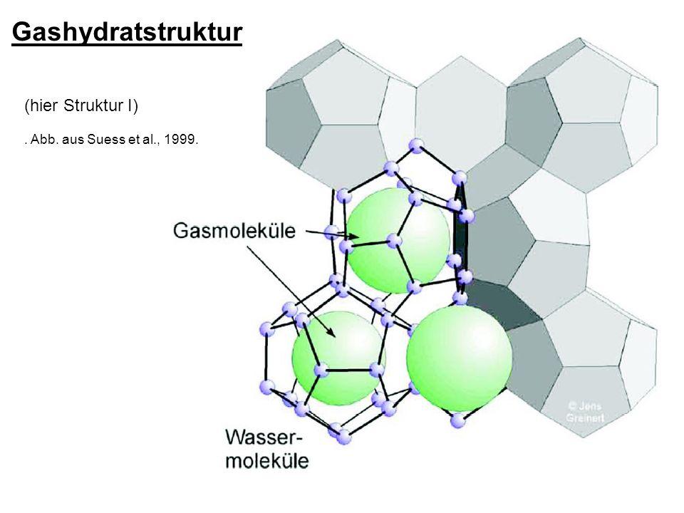 Gashydratstruktur (hier Struktur I) . Abb. aus Suess et al., 1999.