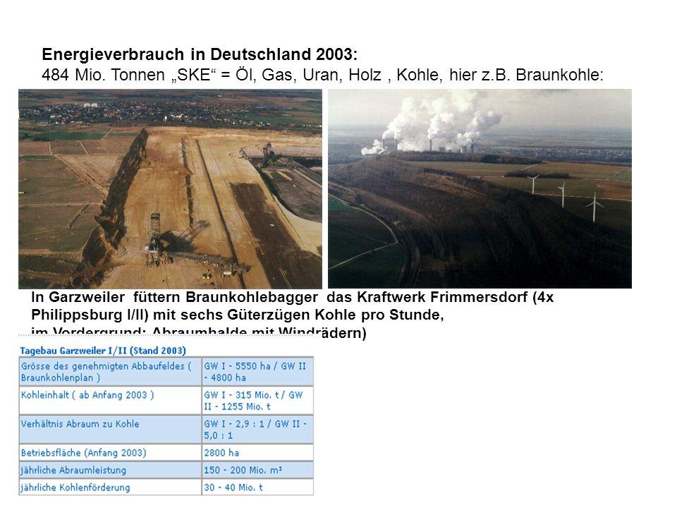Energieverbrauch in Deutschland 2003: