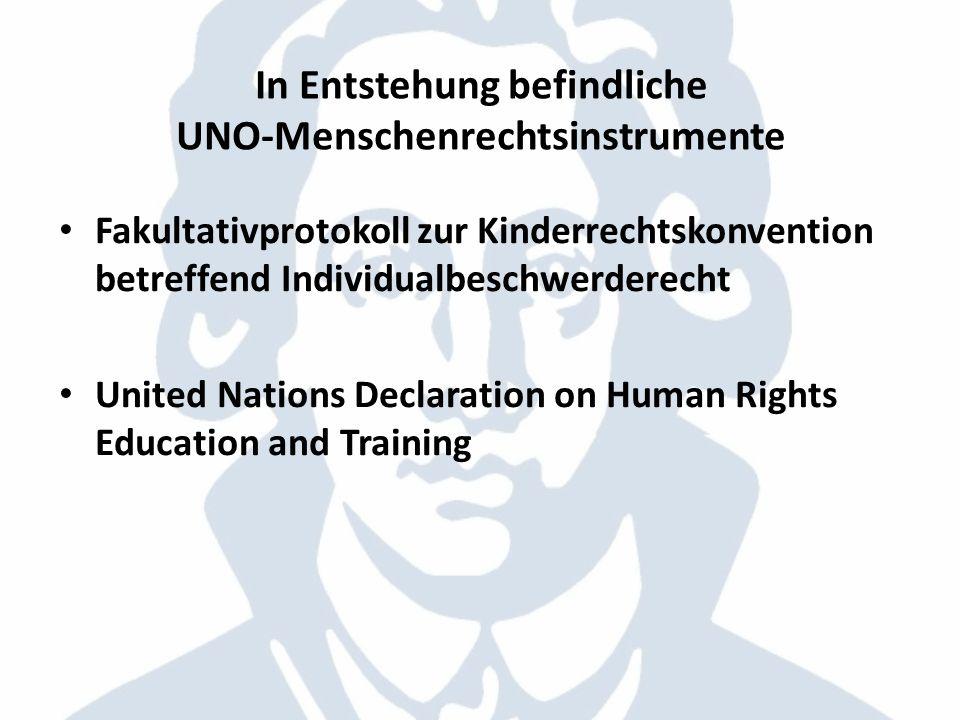 In Entstehung befindliche UNO-Menschenrechtsinstrumente