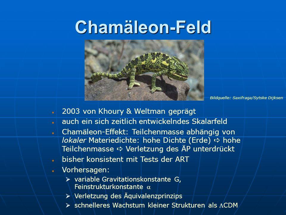 Chamäleon-Feld 2003 von Khoury & Weltman geprägt