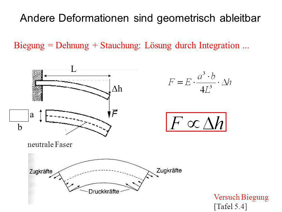 Andere Deformationen sind geometrisch ableitbar