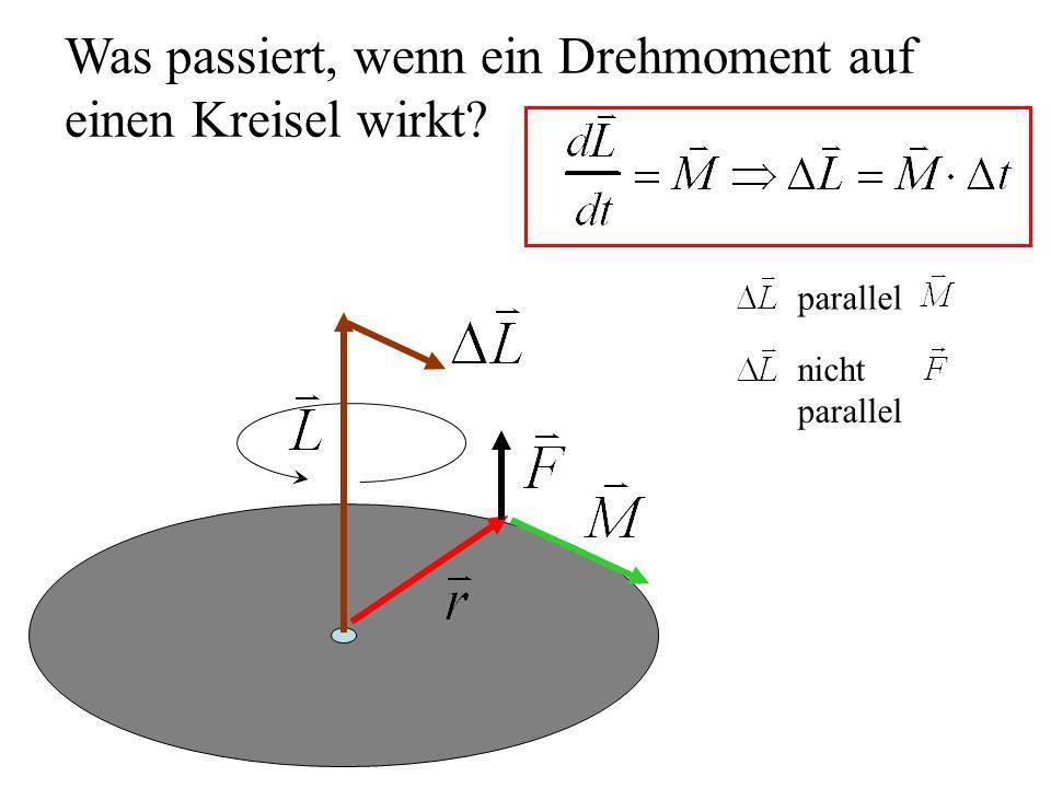 Was passiert, wenn ein Drehmoment auf einen Kreisel wirkt