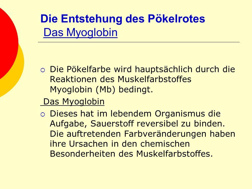 Die Entstehung des Pökelrotes Das Myoglobin