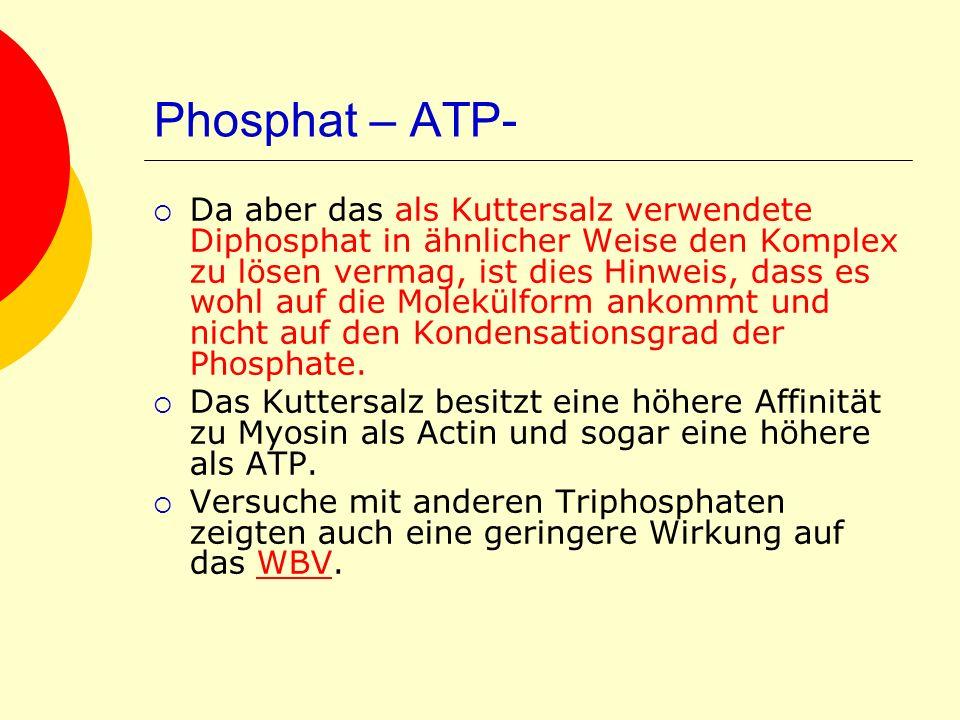 Phosphat – ATP-