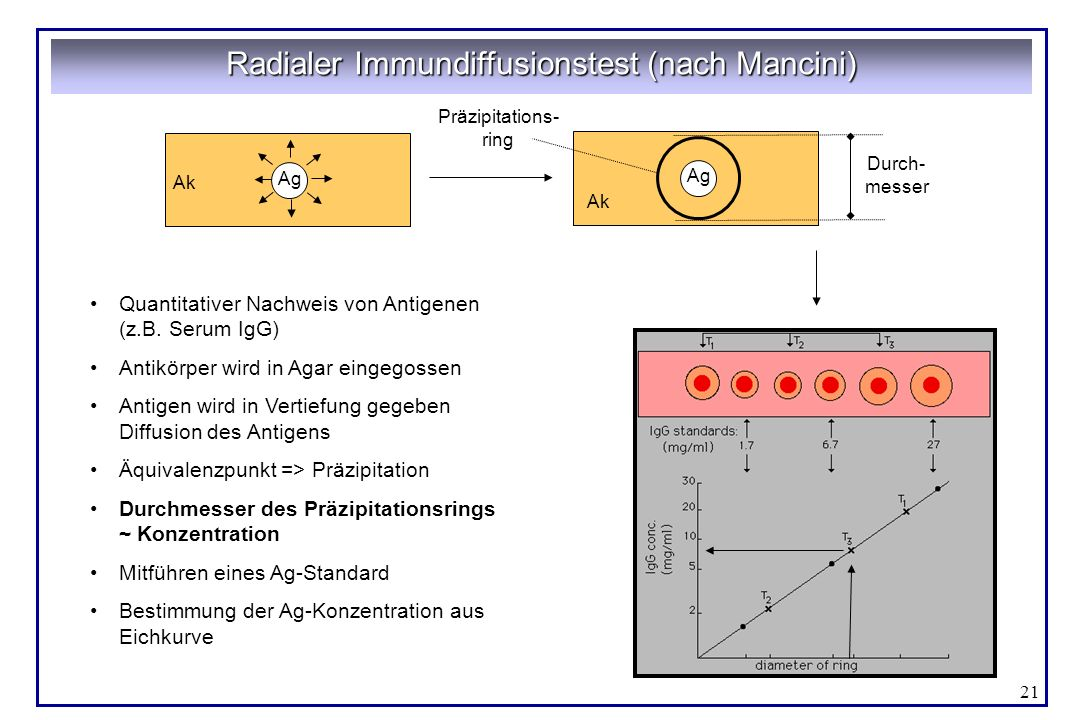 Radialer Immundiffusionstest (nach Mancini)