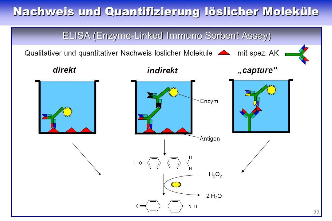Nachweis und Quantifizierung löslicher Moleküle