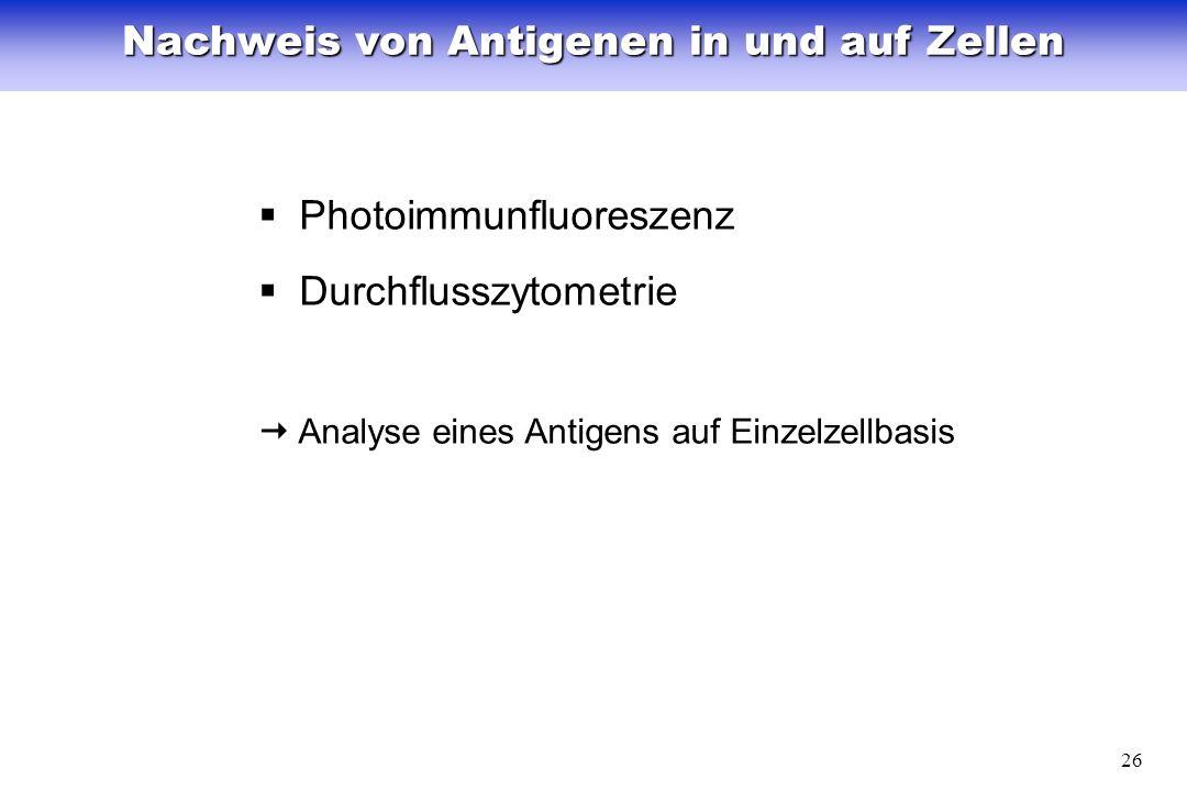 Nachweis von Antigenen in und auf Zellen