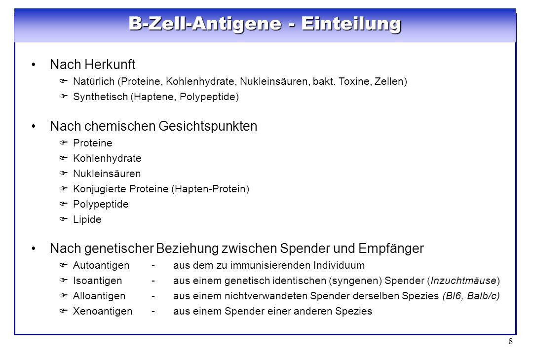 B-Zell-Antigene - Einteilung
