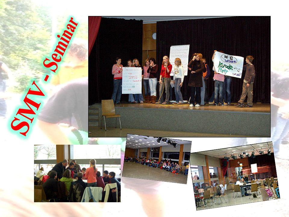SMV - Seminar